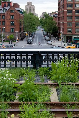 View from The High Line (Photo/Iwan Baan)