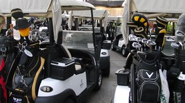 Carts stand at the ready for Innisbrook golfers (Photo/J.Kubin)