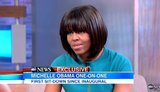 "First Lady Michelle Obama on ABC News' ""Good Morning America"" talking about gun control. Jan. 26, 2013"