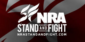 NRA: Stand and Fight
