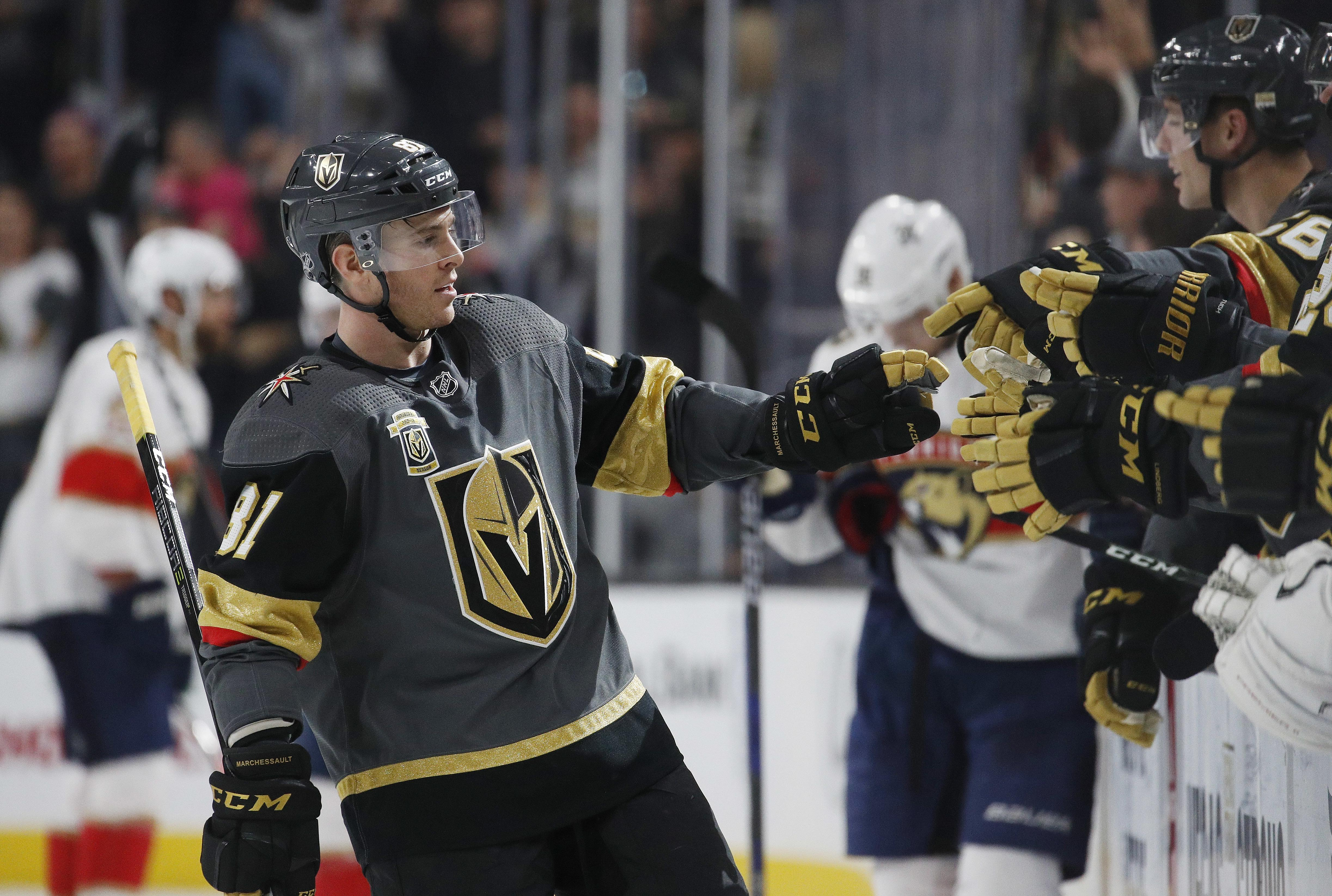 Panthers_golden_knights_hockey_19324