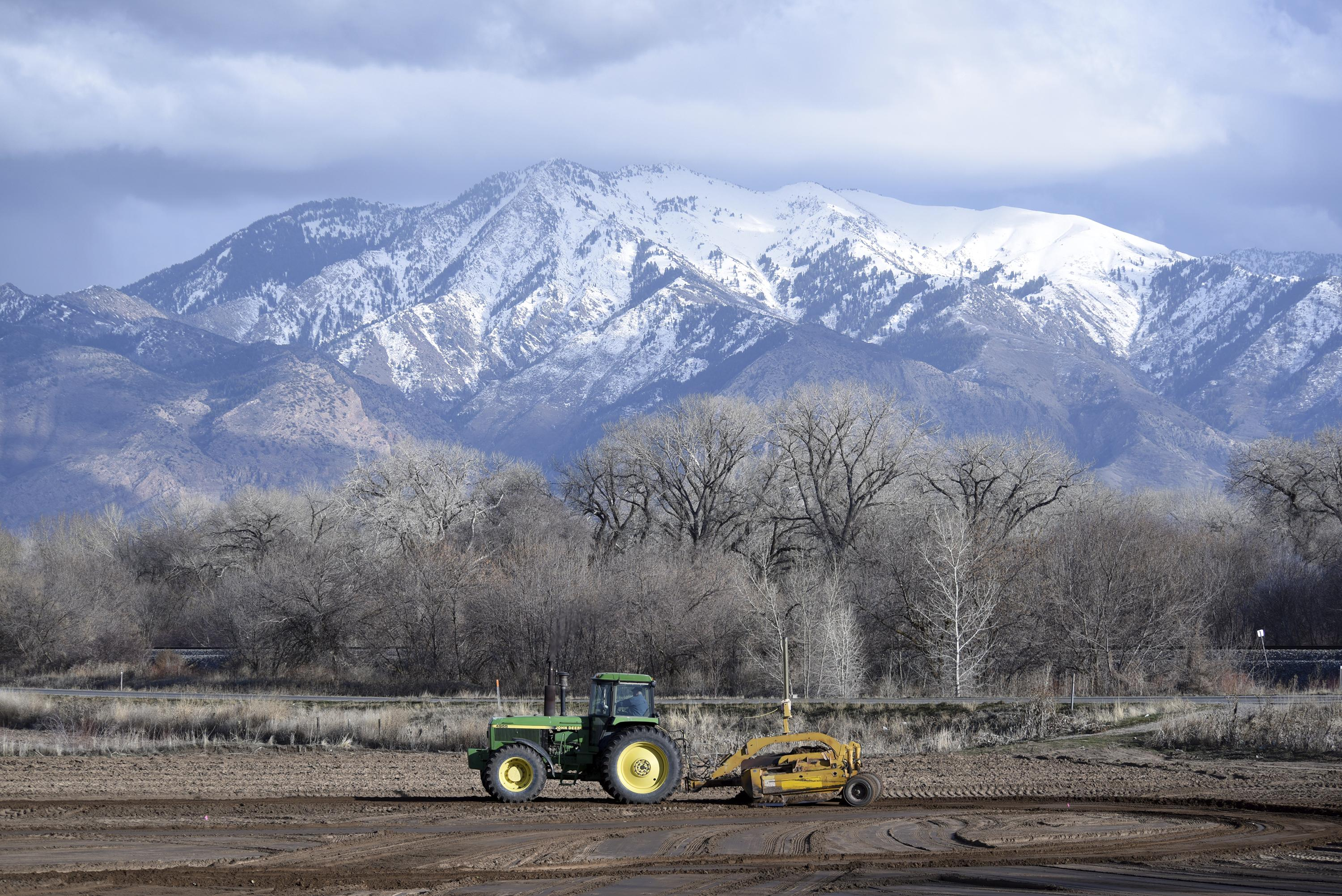 Weber County vegetable farmers dependent on Mexican workers