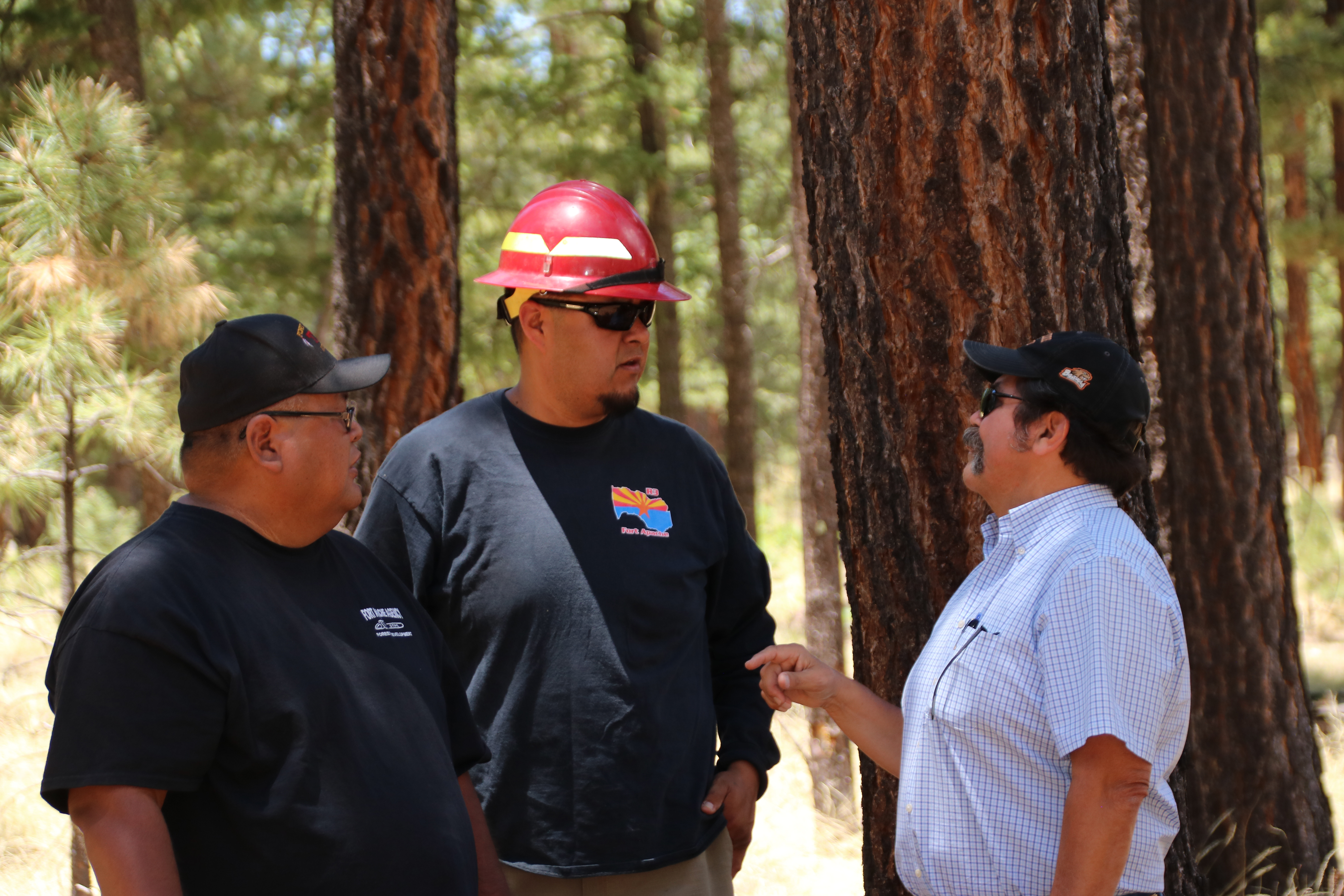 Apache forest management fights wildfires - Washington Times
