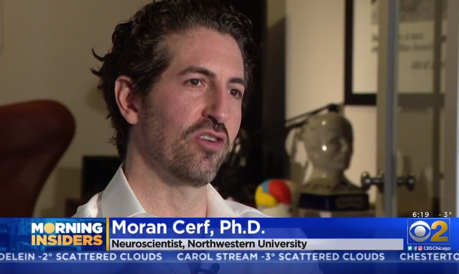 Neuroscientist: Brain-chip recipients may soon look at men and think 'put it back in a cage'