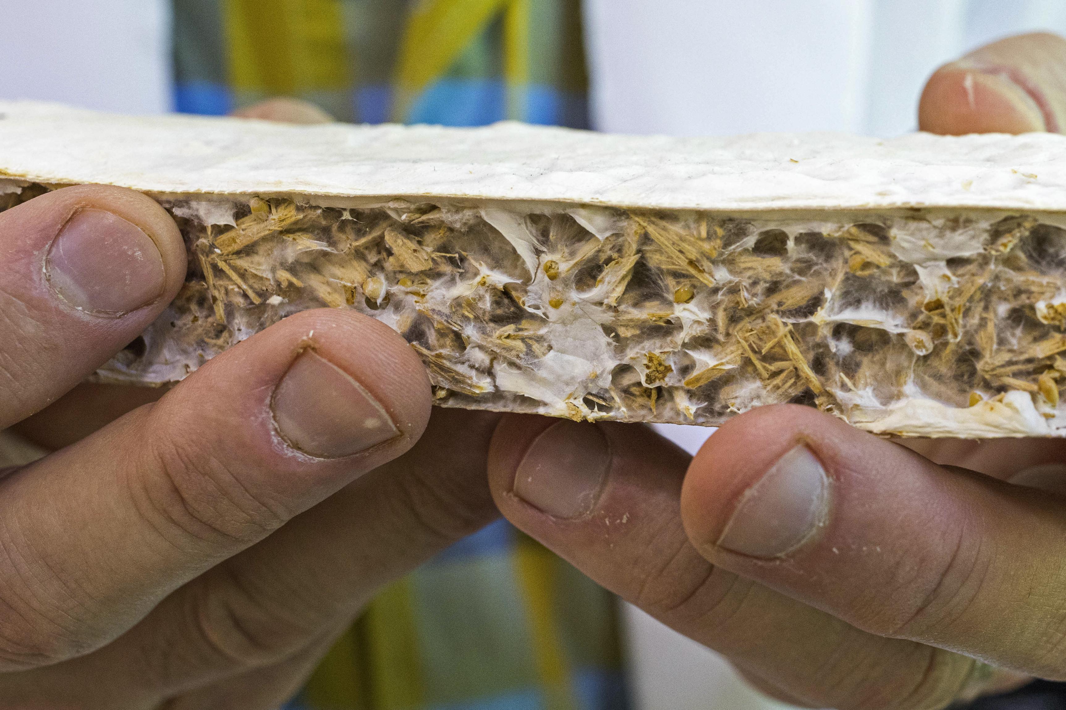 UAA team developing biodegradable insulation