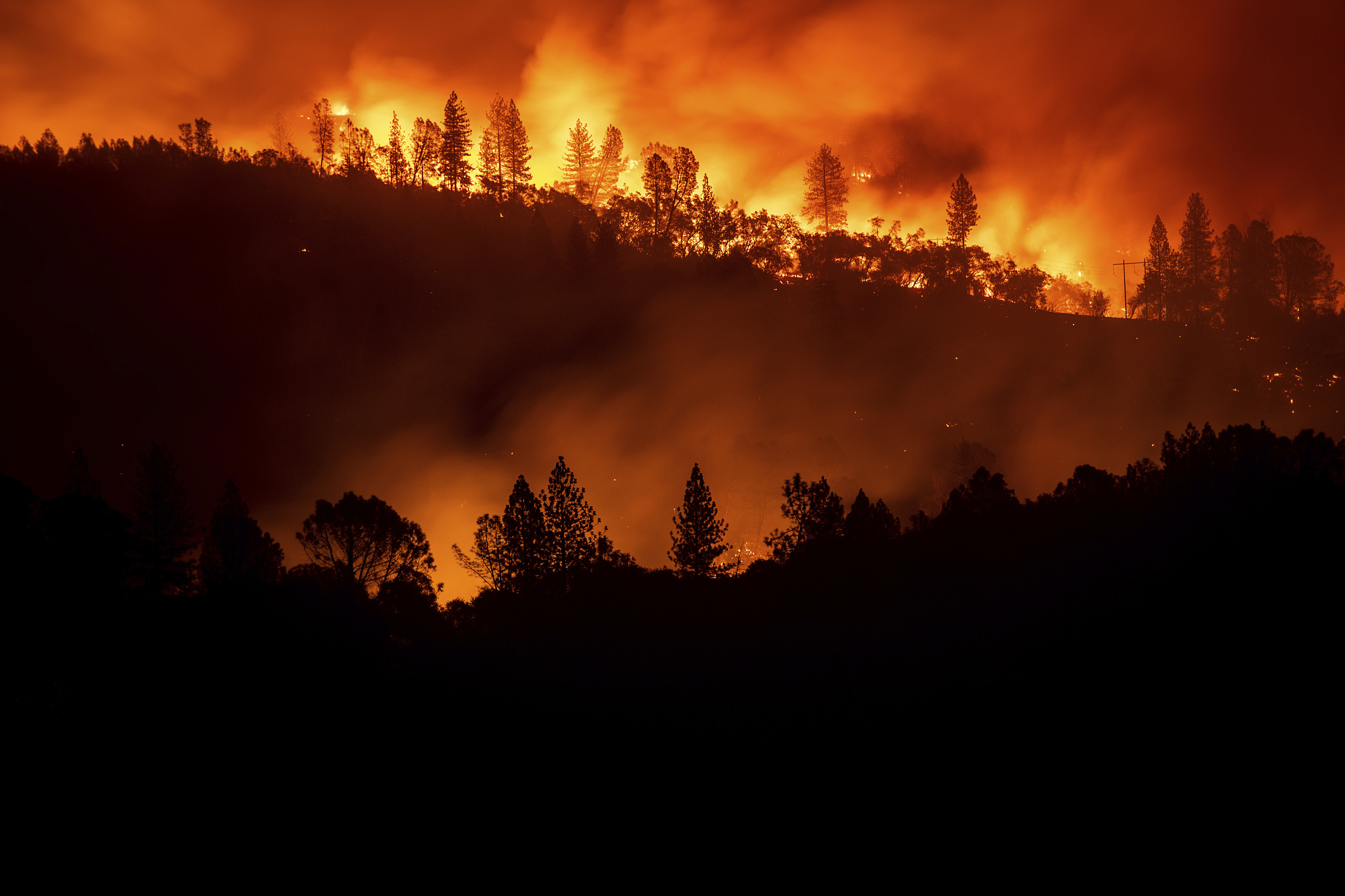Wildfire season lessened as Trump administration mobilizes to reduce risk