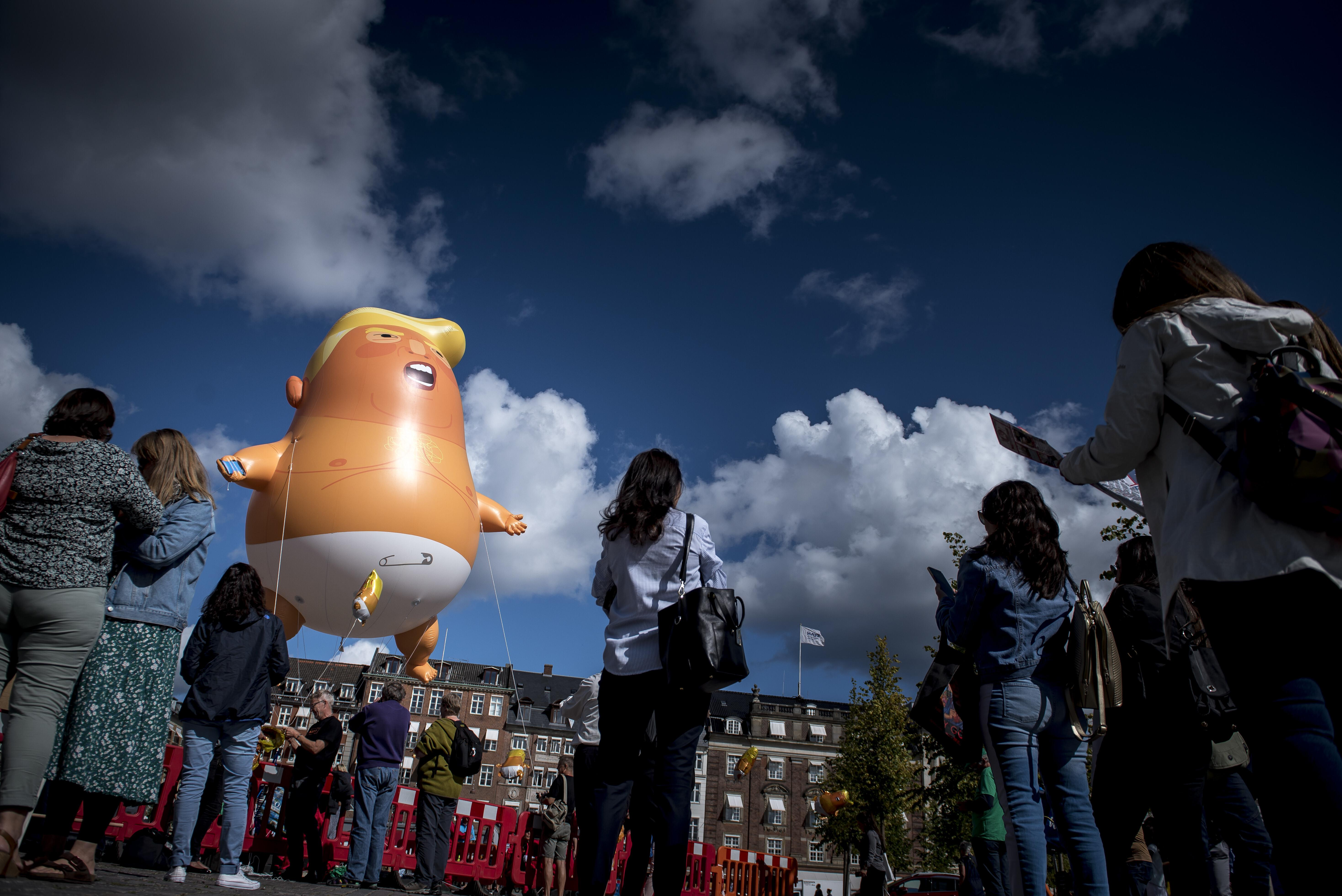 'Baby Trump' files in Denmark after president cancels visit over Greenland mockery
