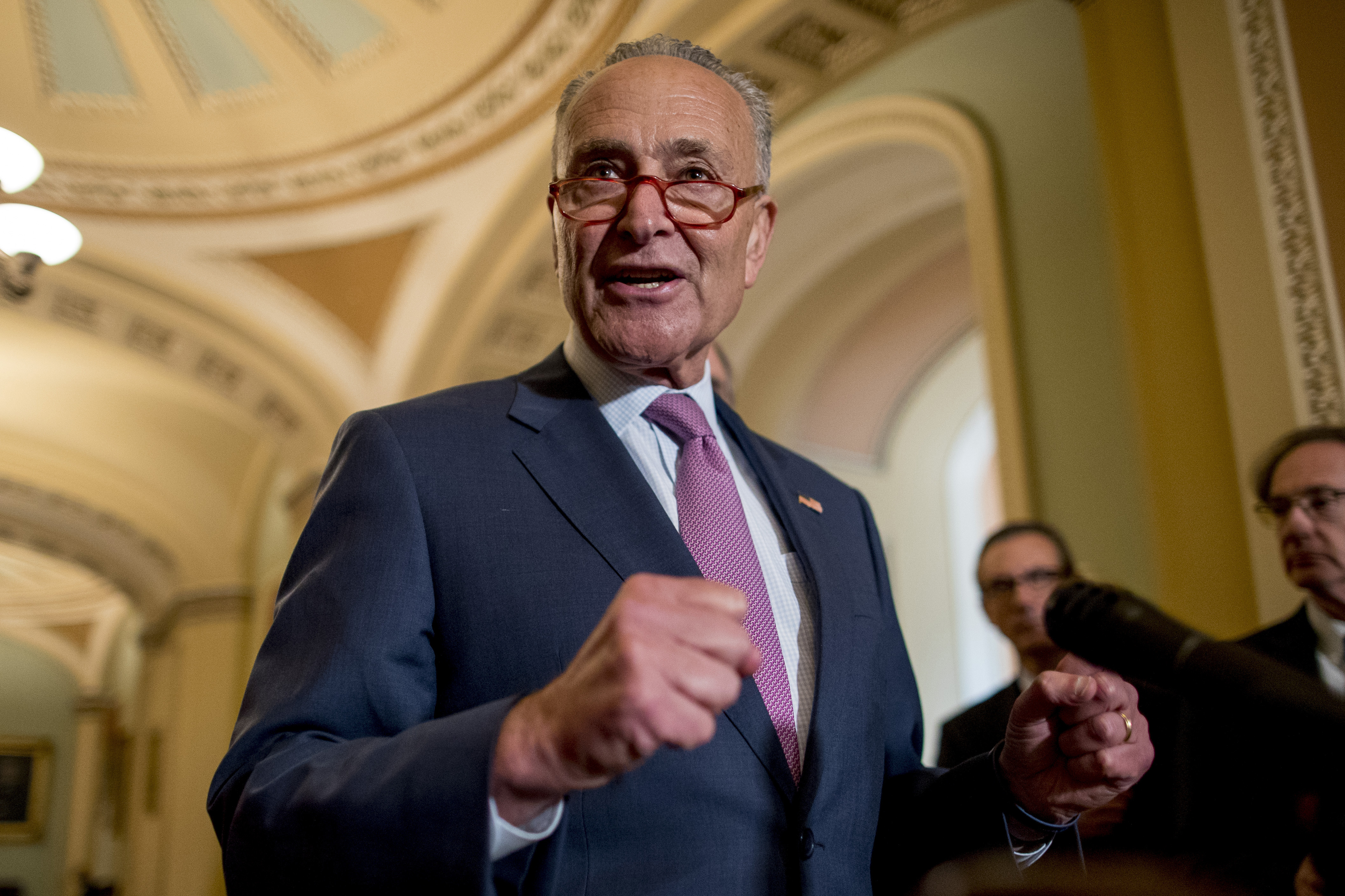 Chuck Schumer: 'Stunt' on border wall funding puts appropriations process in 'jeopardy'