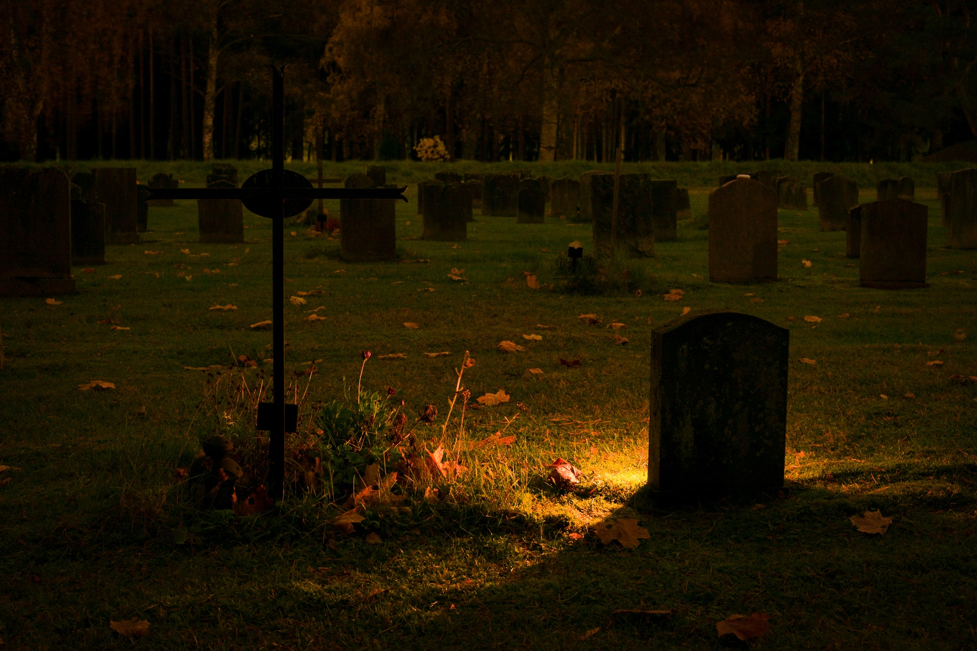 Lafayette Memorial Park, Fayetteville, N.C. cemetery, cancels Halloween-themed movie night